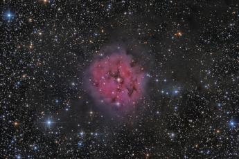 IC5146 - Туманность Кокон