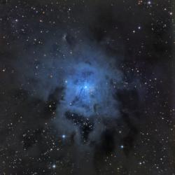 NGC7023 - Туманность Ирис